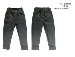 YD-608081